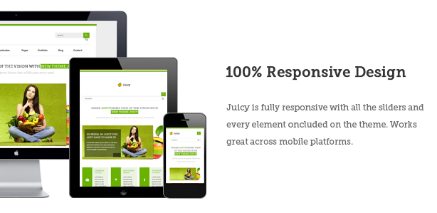 Juicy - Responsive Multi-Purpose WordPress Theme